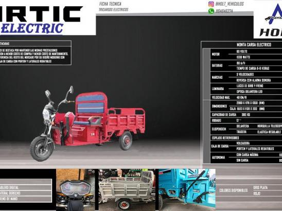 Tricargo Holt Artic Electric